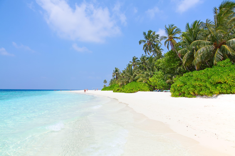 photodune 11945921 maldives l