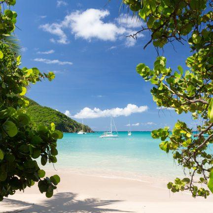 Strand met bomen en boten op Sint Maarten