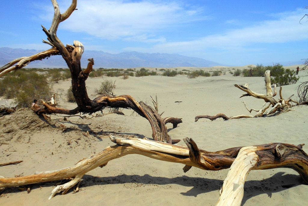 Death Valley National Park in de Verenigde Staten