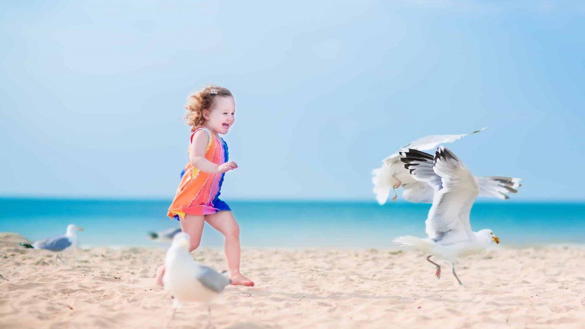Kind rent achter zeemeeuwen aan op het strand