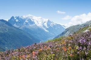 Uitzicht op de Mont Blanc in de Franse Alpen, Frankrijk