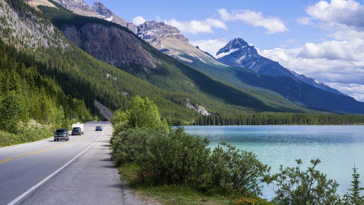 Waterfowl lake in Canada