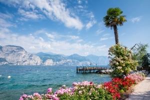 Bloemen langs de kade van het Gardameer, Italië