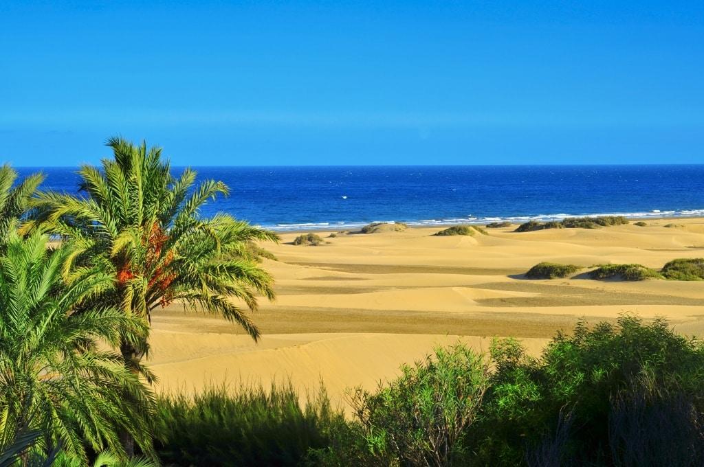 Dunas de Maspalomas op Gran Canaria, Canarische Eilanden