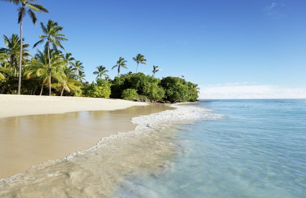 Strand met palmbomen aan de Caribische Zee van de Dominicaanse Republiek