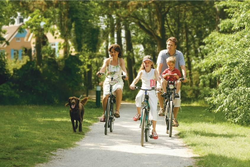 Fietsen in Kustpark Texel in De Koog, Waddeneilanden