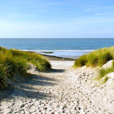 duinen strand nederland