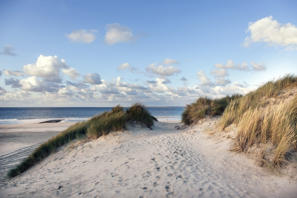 Duinen en strand op Vlieland, Waddeneilanden