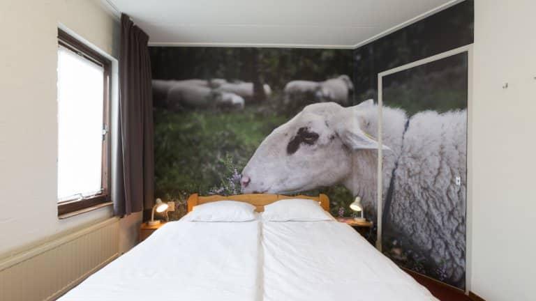 Hotelkamer van Hotel de Drift in Dwingeloo, Groningen