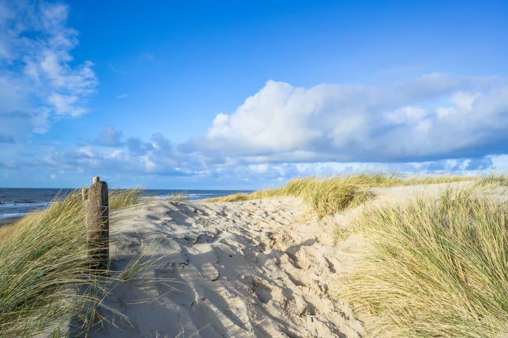 Duinen op het strand van Vlieland