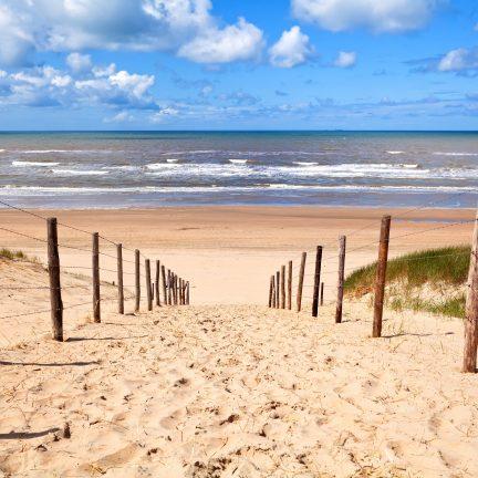 Pad door de duinen naar het strand en de zee