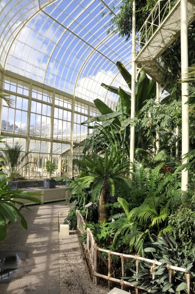 National Botanic Gardens in Dublin, Ierland