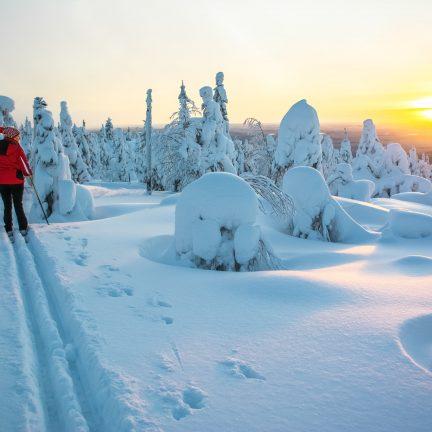 Vrouw aan het langlaufen in Lapland, Finland