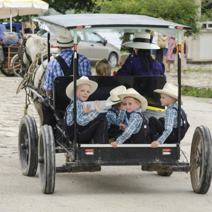 Amish familie in hun buggy