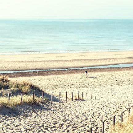 Strand van Noordwijk in Zuid Holland