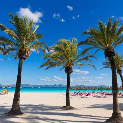 Strand van Alcudia Mallorca, Spanje