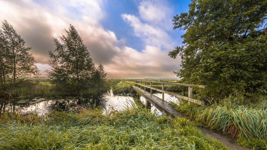 Bruggetje bij Eelde-Paterswolde, Drenthe