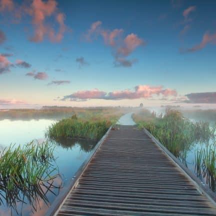 Zonsopgang in een natuurgebied in Drenthe