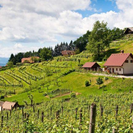 Omgeving van Camping Terme Catez in Čatež ob Savi, Slovenië