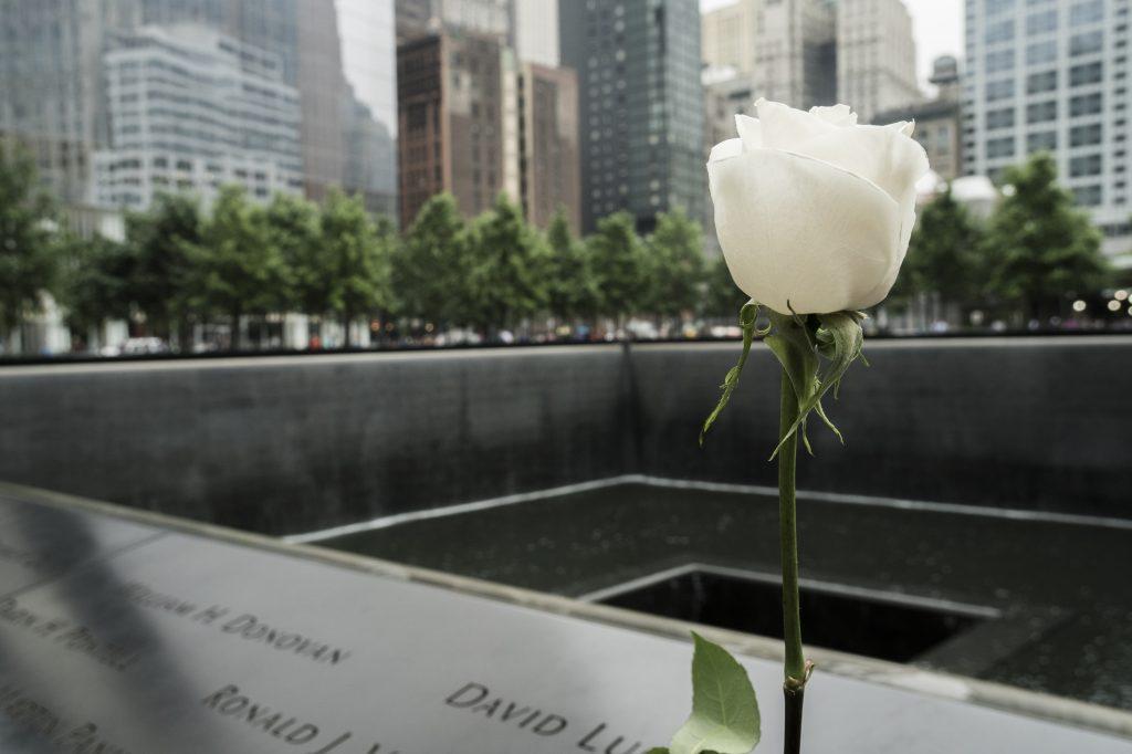 Witte roos bij het 9/11 memorial in New York, Verenigde Staten