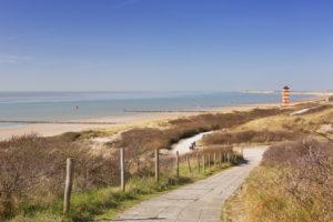 De duinen bij Dishoek in Zeeland