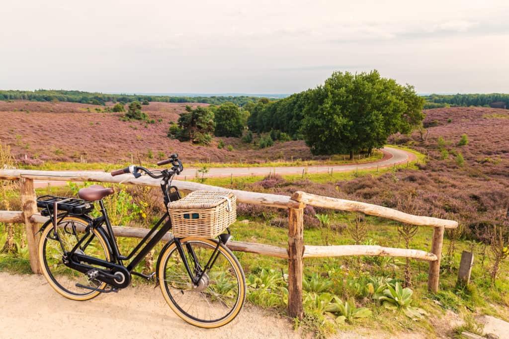 Elektrische fiets met mandje in Nederlandse nationale park van de Veluwe