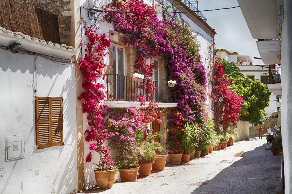 Straatje met kleurrijke bloemen in Dalt Vila, Ibiza