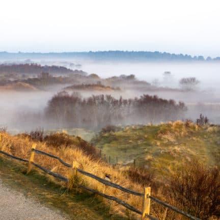 Zonsopgang in natuurgebied bij Uden, Noord-Brabant