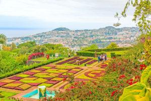 Botanische tuin Jardim Botânico op Madeira, Portugal