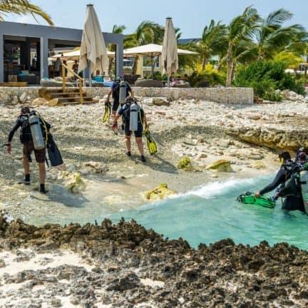Duiken van Delfins Beach Resort Bonaire in Kralendijk, Bonaire