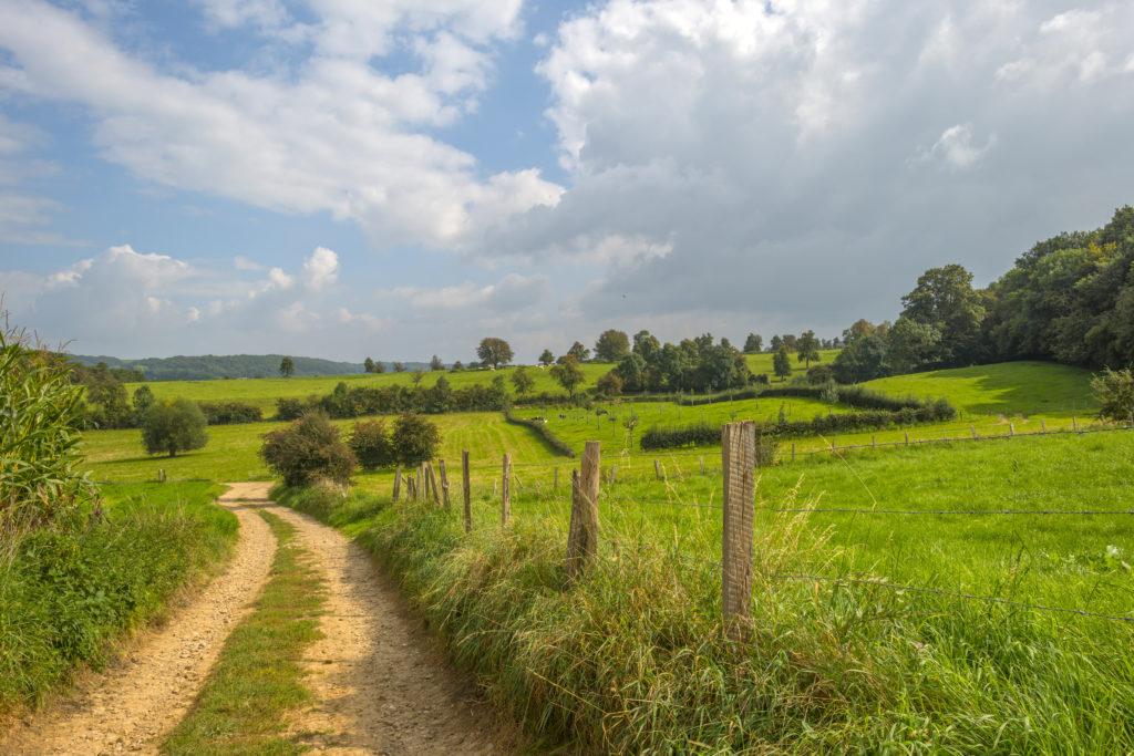 Uitzicht over het Limburgse heuvellandschap