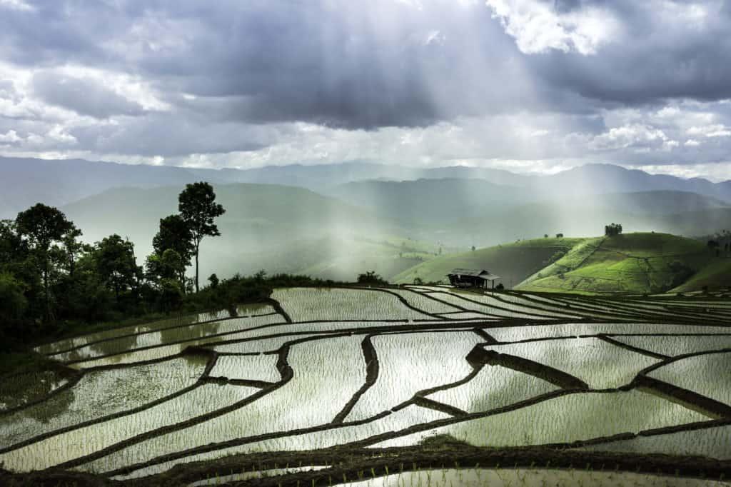 Uitzicht over rijstvelden en mistige heuvels in Chaing Mai, Thailand