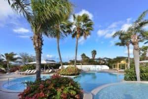 TIME TO SMILE Chogogo Dive & Beach Resort in Jan Thiel Baai, Curaçao, Curaçao