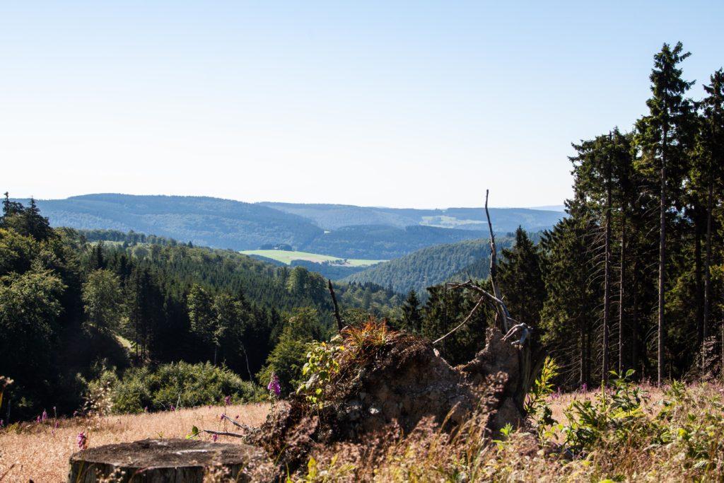 Uitzicht over een vallei in Rothaarsteig, Duitsland