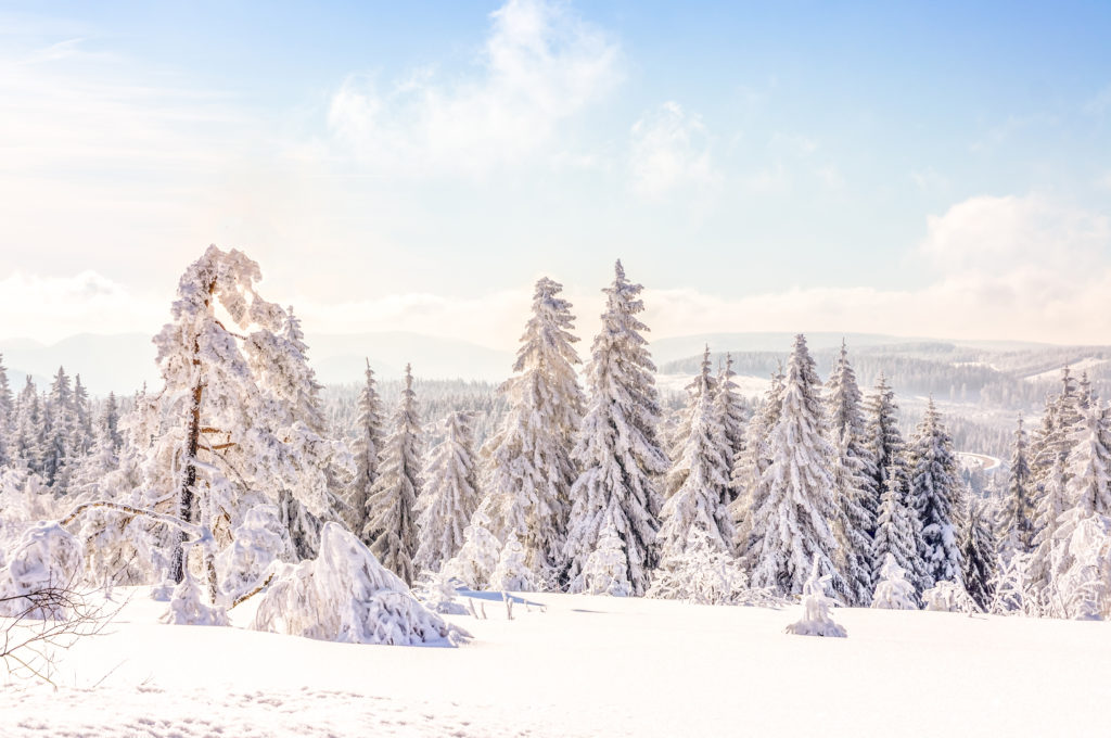 Winter in de Harz, Duitsland