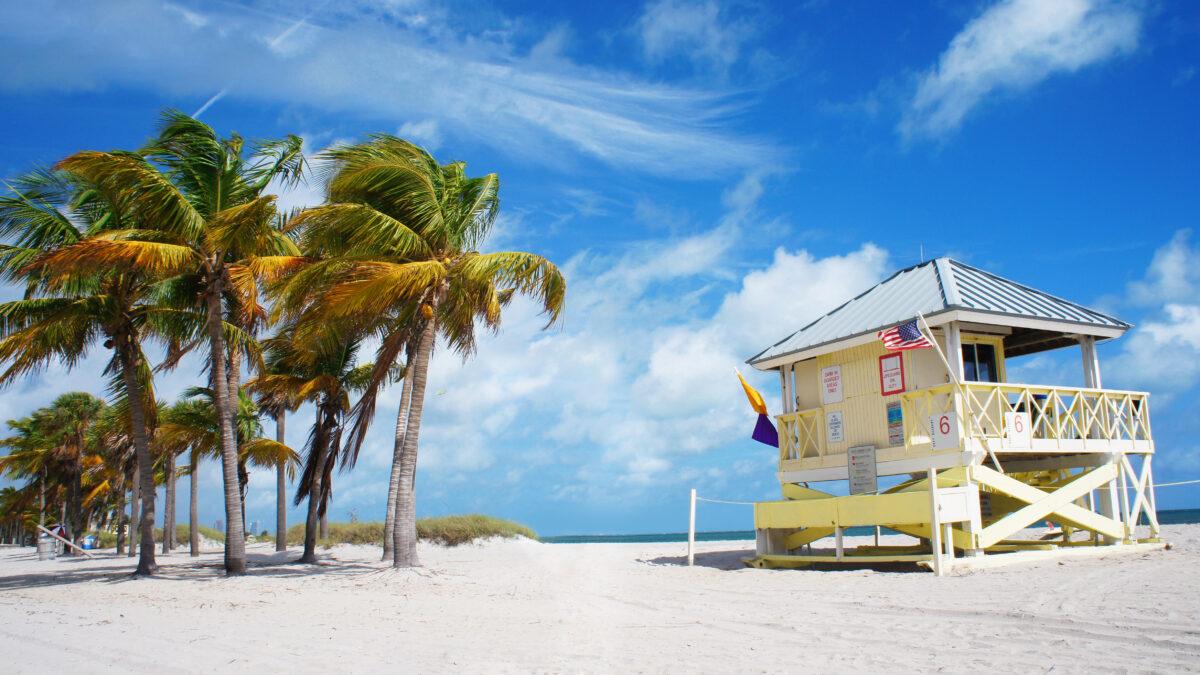Palmbomen en strandhuis in Miami, Florida