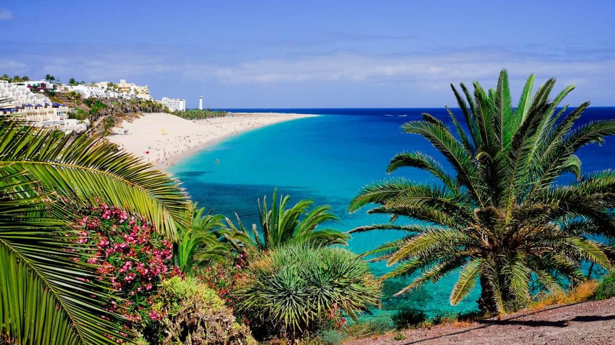 Strand van Fuerteventura in Spanje
