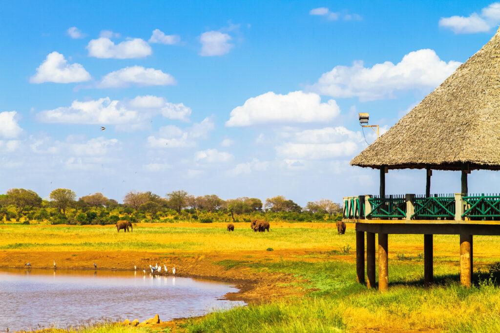 Lodge om wilde beesten te bekijken in Nationaal park Tsavo, Kenia