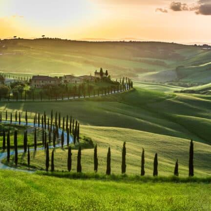 Cipressen en heuvels in Toscane, Italië