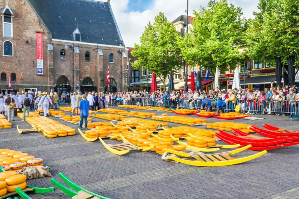 Heel veel kazen op de kaasmarkt in Alkmaar, Noord-Holland