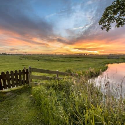 Uitzicht over de weilanden en een sloot in Friesland