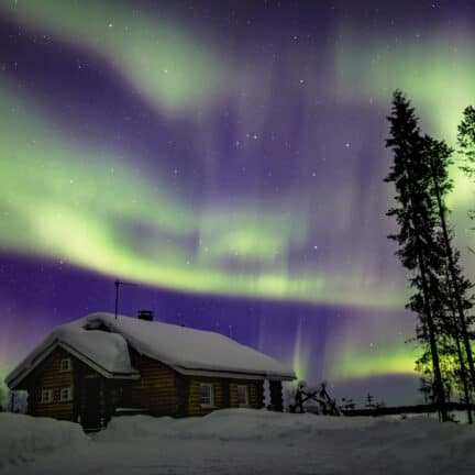 Noorderlicht in de lucht bij een besneeuwd bos en houten huisje