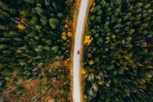 Auto rijd door het bos in Finland