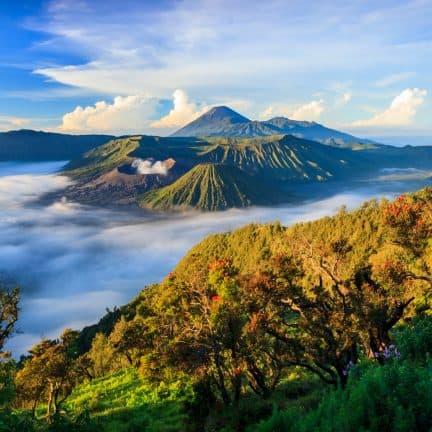 Bromo vulkaan op Java in Indonesië