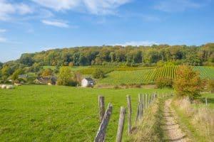 Heuvellandschap van Limburg in Nederland