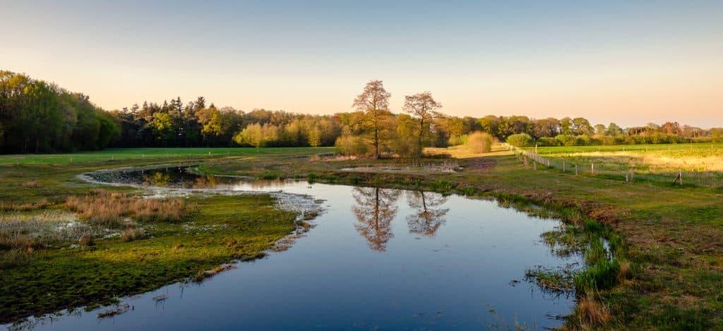 Kronkelende rivier in het landschap van Overijssel