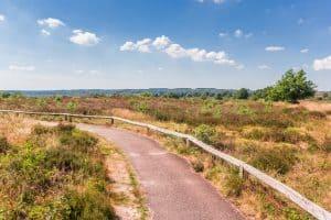 Nationaal Park Sallandse Heuvelrug in Overijssel