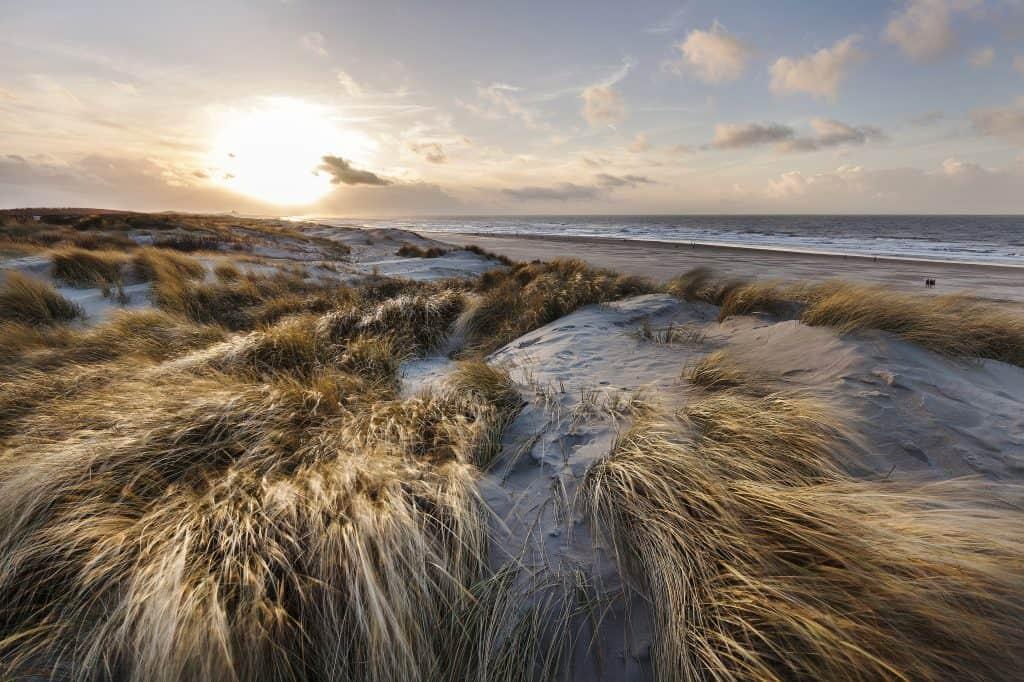 Duinen in zee in Zuid-Holland