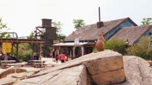 Prairiehondje in Wildlands Adventure Zoo, Emmen
