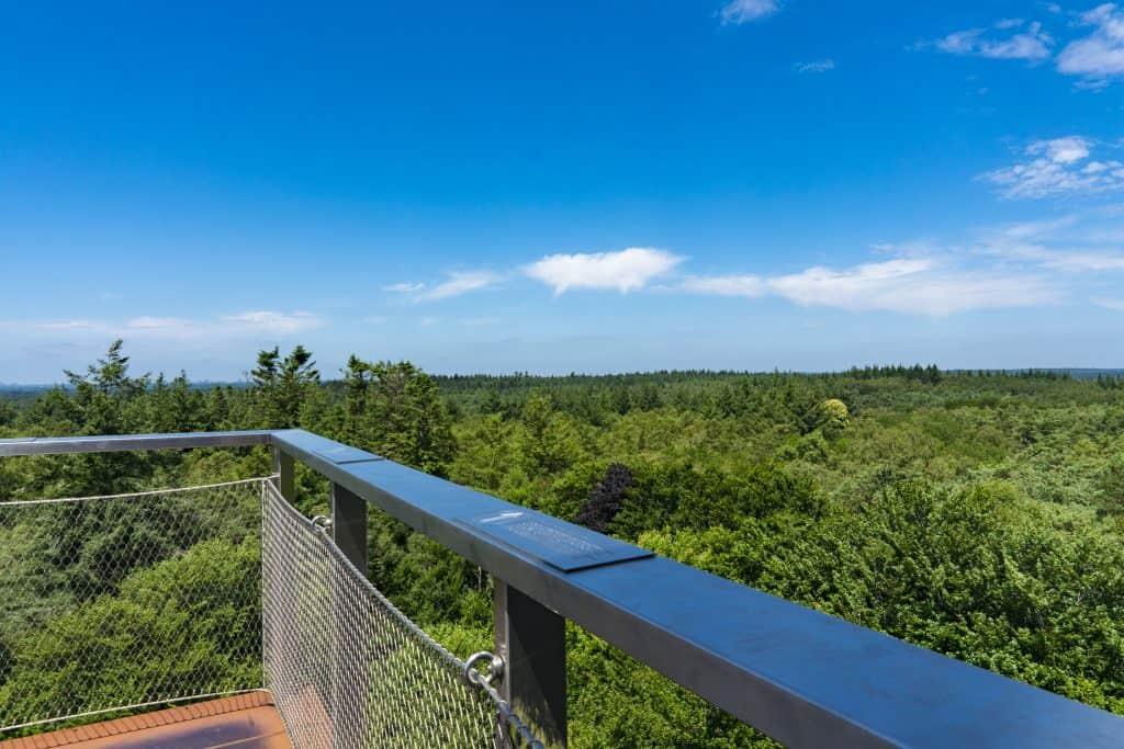 Uitzicht vanaf de uitkijktoren op de boomtoppen van het Nationaal Park Utrechtse Heuvelrug